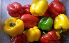 烹饪甜椒会影响营养吗?